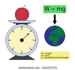 illustration of physics, The weight of an object is the force of gravity on the mass of the object, The General Relativity Theory of Gravitation.