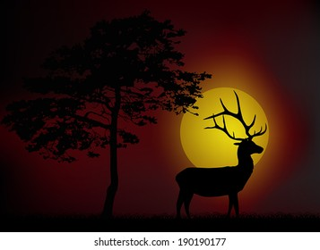 illustration with pine and deer silhouettes at sunset