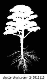 illustration with pine tree silhouette isolated on black background