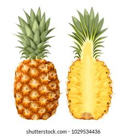 Illustration of pineapple