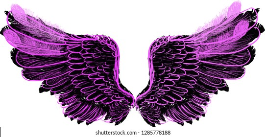 illustration with pink and black wings isolated on white background