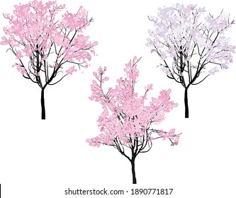 illustration with pink trees isolated on white background