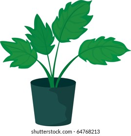 illustration of a plant and pot on a white background
