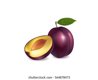 illustration of a plum on white background