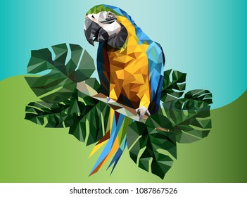Illustration polygonal drawing of macaw bird and tropical leaf.