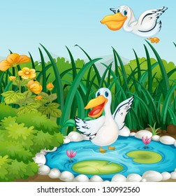 Illustration of a pond with ducks