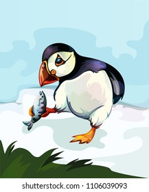 Illustration of a puffin bird
