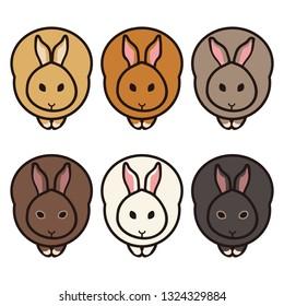 Illustration of the rabbit