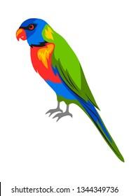 Illustration of rainbow lorikeet. Tropical exotic bird isolated on white background.