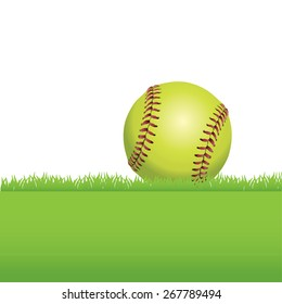 An illustration of a realistic softball sitting on green grass.