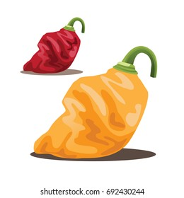Illustration of red and orange habanero peppers isolated on white. EPS 10 vector.