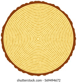 Illustration of the round wood section