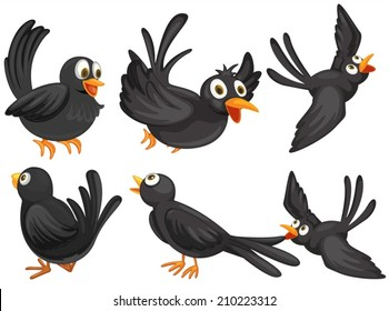 Illustration of a set of black birds