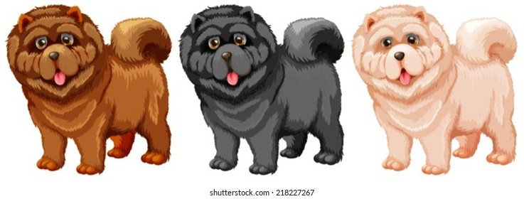 Illustration of a set of chow chow