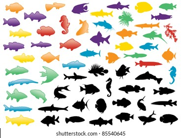 Illustration set of fish silhouettes. All objects are isolated and grouped. Colors and transparent background color are easy to adjust.