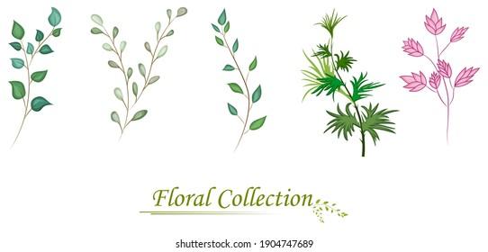 illustration of Set of floral branch green leaves. Wedding concept with flowers, Floral arrangements for poster,  greeting card or invitation design