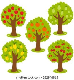 Illustration set of fruit orchard trees