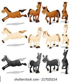 Illustration of a set of horses