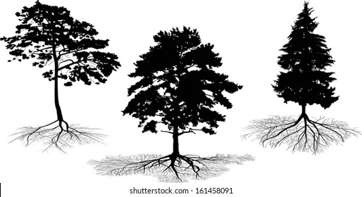 illustration with set of tree silhouettes isolated on white background