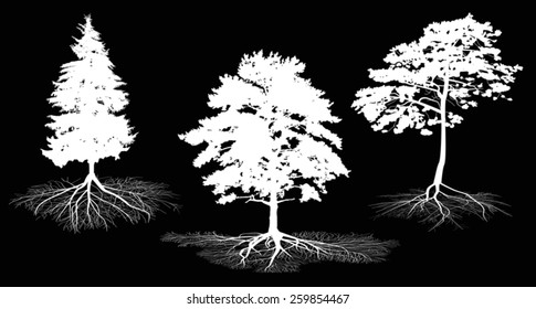 illustration with set of tree silhouettes isolated on black background