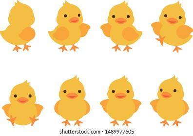 Illustration set of various chicks