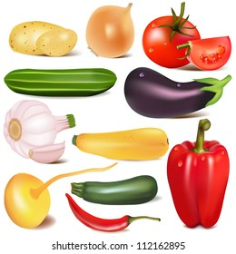 illustration set vegetable with joint by turnip eggplant