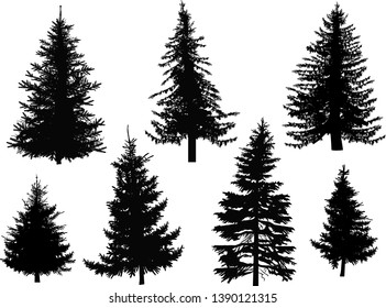 illustration with seven fir silhouettes isolated on white background
