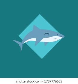 illustration of shark. Isolated vector