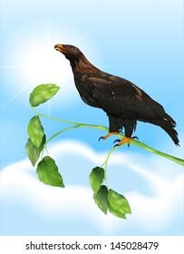 Illustration showing the eagle