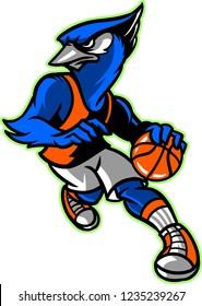 The illustration shows a Blue Jay that's playing basketball. Blue Jay has a blue color and he's wearing a basketball uniform. He's running, trying to score a goal.