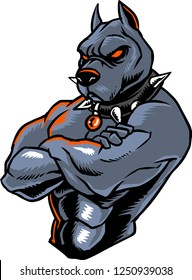 The illustration shows a strong pitbull character. He has a muscular body and he wears a spiked collar. He is one of the best fighters.