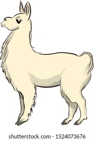 illustration of side view of single proud llama