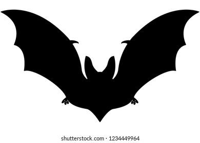 Illustration of the silhouette flying bat