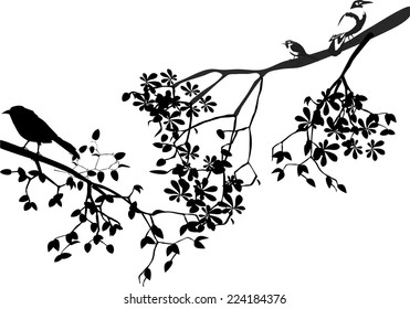 Illustration of silhouettes of birdson tree branch