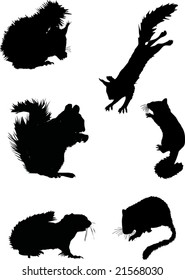 illustration with six squirrel silhouettes isolated on white background