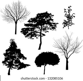 illustration with six tree silhouettes isolated on white background