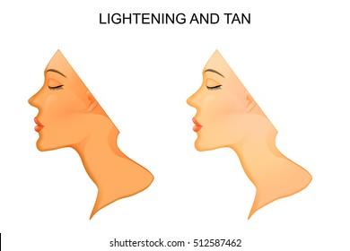 illustration of the skin. Tanning and skin lightening.