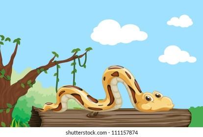 Illustration of a snake on a log
