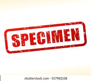 Illustration of specimen text stamp