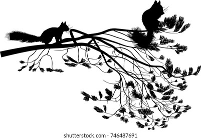 illustration with squirrels and pine tree branch isolated on white background