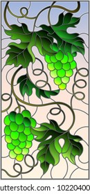 The illustration in stained glass style painting with a bunch of green grapes and leaves on sky background,vertical image