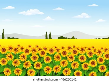 Illustration of sunflower field