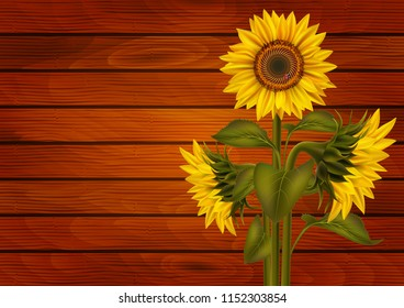 Illustration of sunflowers and ladybird on wooden board