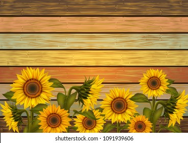 Illustration of sunflowers and leaves on varicolored wooden board