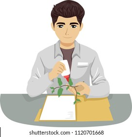 Illustration of a Teen Guy Botanist Setting Up an Herbarium Sticking Specimen Plant with Glue