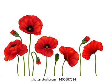 Illustration of template for wedding, greeting or invitation card with poppy flowers isolated