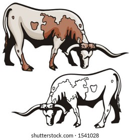 Illustration of a Texas longhorn.