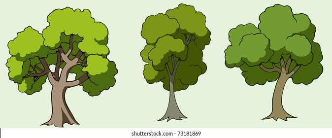 Illustration of three cartoon drawn trees