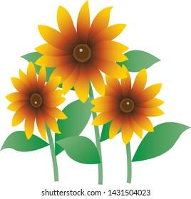 Illustration of three corn flower (summer flowers)