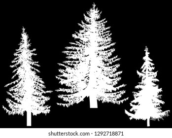 illustration with three fir silhouettes isolated on black background